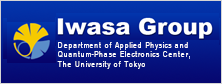 Iwasa Group